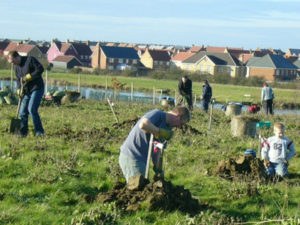 Cambourne Community Orchard
