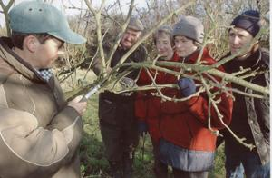 Learning when and how to prune was part of the practical aspects of the course.