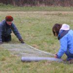 Preparatory work on tree protection