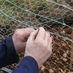 Fixing the mesh