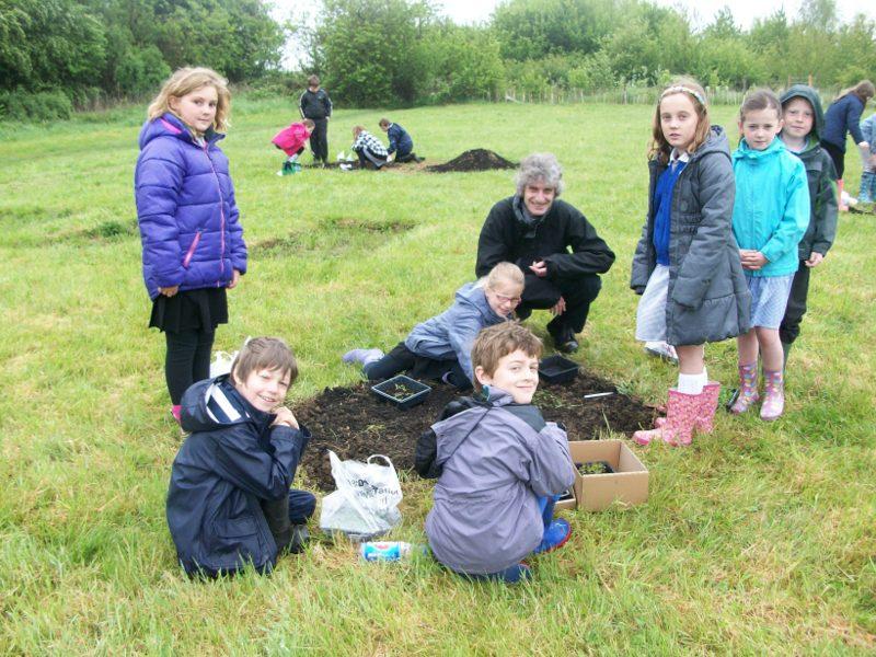 Junior school wildflower planting