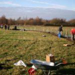 Hedging weekend (16)