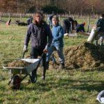 Hedging weekend (18)