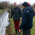 Hedging weekend (5)