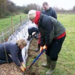 Hedging weekend (8)