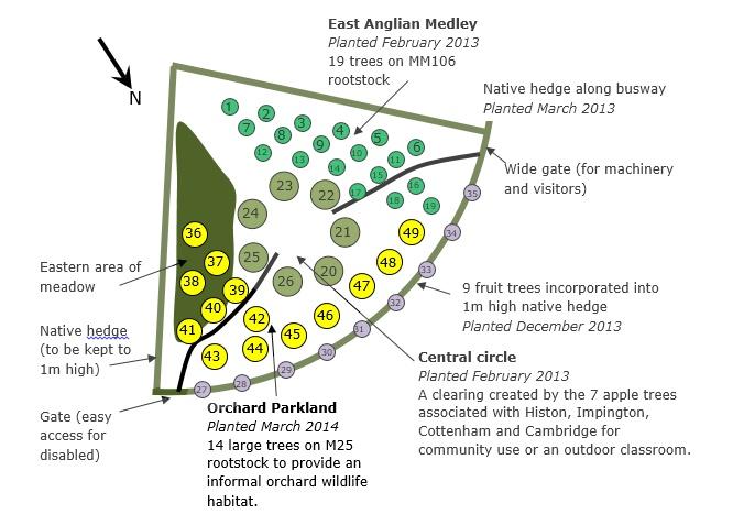Orchard plan 2014