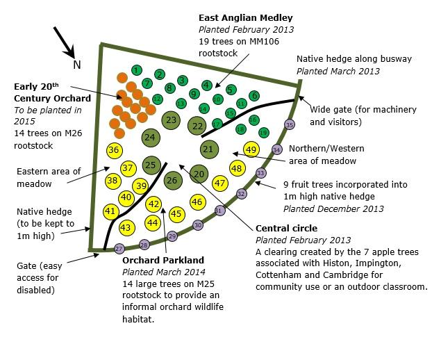 2015 orchard plan