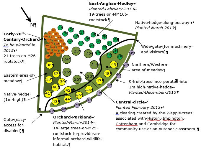 Orchard Planting Map on Small Orchard Layout Plan